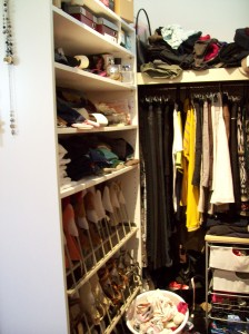 Ikea Pax Wardrobe with Shoe Organiser